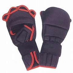 Bag Gloves Boxing Equipments Levior impex