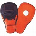 Focus Pads Boxing Equipments Levior