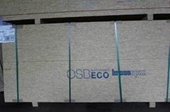 OSB(Oriented Strand Board) / SIP OSB