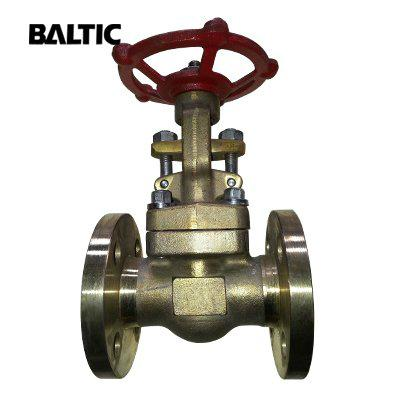 ASTM B148 C95800 Gate Va  es 1