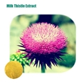 High Quality Milk Thistle Extract(