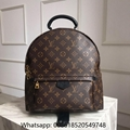 Louis Vuitton Backpack LV  Palm Springs Backpack LV monogram Backpack