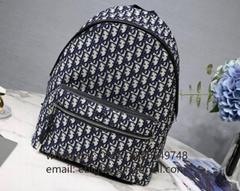 Dior Oblique Backpacks D