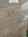 Polished Japarana Gold Granite Slabs and