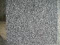 G688 Granite Tiles and Slabs China Grey