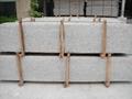 Giallo Santa Cecilia Granite Slabs and Tiles Brazil Yellow Granite Tiles 4