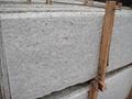 Giallo Santa Cecilia Granite Slabs and Tiles Brazil Yellow Granite Tiles 5