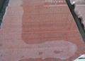 Imperial Red Granite Slabs tiles India