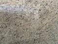 Hotsale Giallo Ornamental Granite Countertop Bar Top Giallo Ornamental Beige Gra 3
