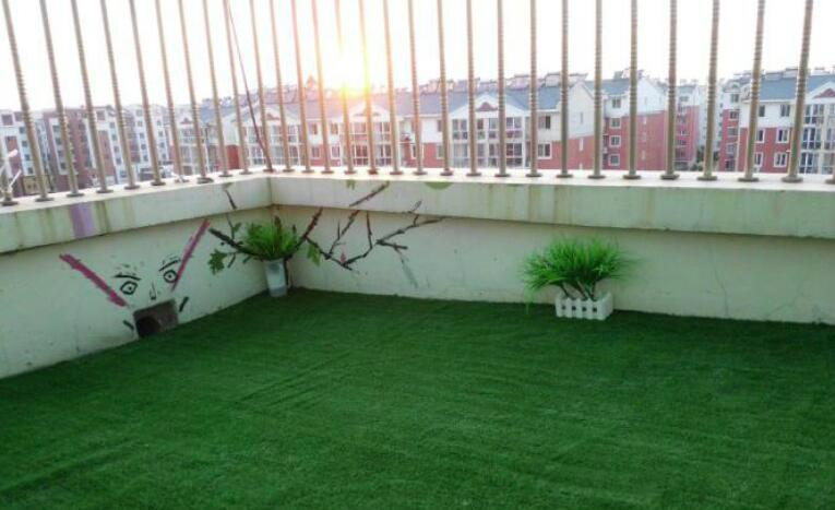 10mm景觀草深綠淺綠 1