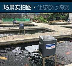东莞自动喂食器鱼池喂粮机批发