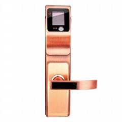 人脸识别锁智能锁物联锁防盗锁
