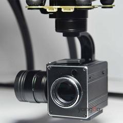 Professional X10 1080P