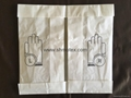#1410 Lightly Powdered Steriled Latex Surgical Gloves 3