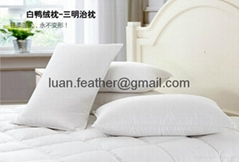 High Quality China factory wholesale Made in China superior quality feather and