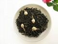 Chinese maker Premium quality jasmine
