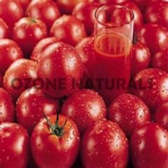 Tomato Oleoresins Co2 Extracted