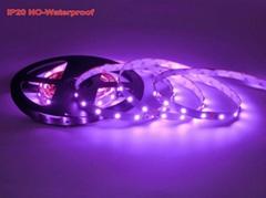 Pink Color LED Strip 352