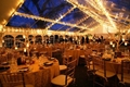 High Quality Outdoor 10x10 Canopy Tent For Wedding Party 5