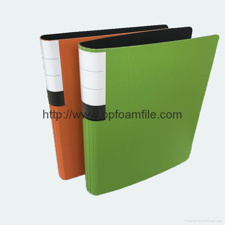 durable using colorful FC PP foam 2 hole D ring binder file 2