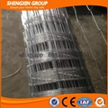 ISO 9001 Hot Dipped Galvanized Cow Fence