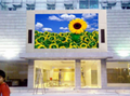 P3 P4 P5 P6 P8 P10 full color video led display screen for advertising RGB SMD  1
