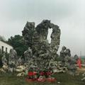太湖石 1