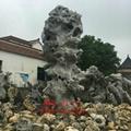 太湖石 2