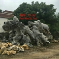 太湖石 3