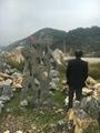 太湖石 4