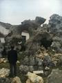 太湖石 5