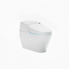 Good quality bathroom ceramic intelligent toilets one piece siphonic toilet