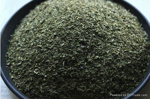 Lower Price Organic Finny Green Tea 2