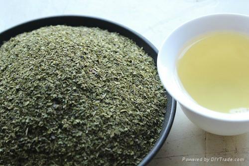 Lower Price Organic Finny Green Tea 3