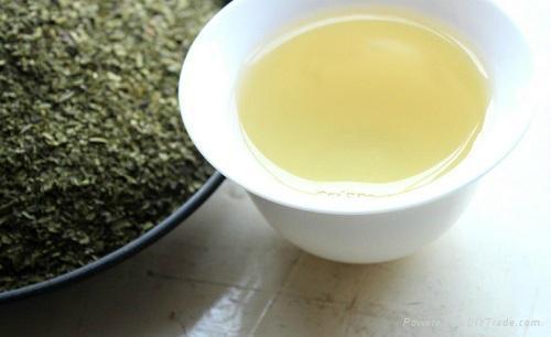 Lower Price Organic Finny Green Tea 5
