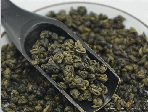 Lower Price Organic Gunpowder Green Tea 1