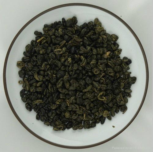 Lower Price Organic Gunpowder Green Tea 3