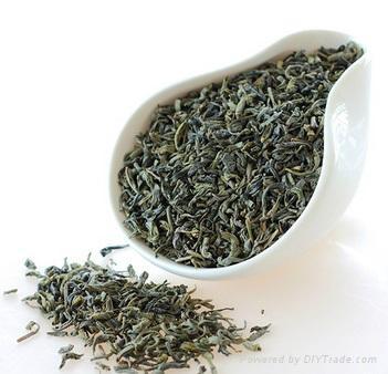 Lower Price Organic Loose Green Tea 1