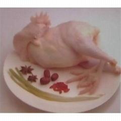 成都雞肉批發白條雞批發