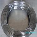 供應優質進口 304L不鏽鋼琴鋼線 價格 5