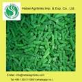 Frozen IQF  Green Bean Cuts