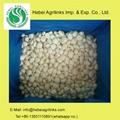 Frozen Garlic Cloves