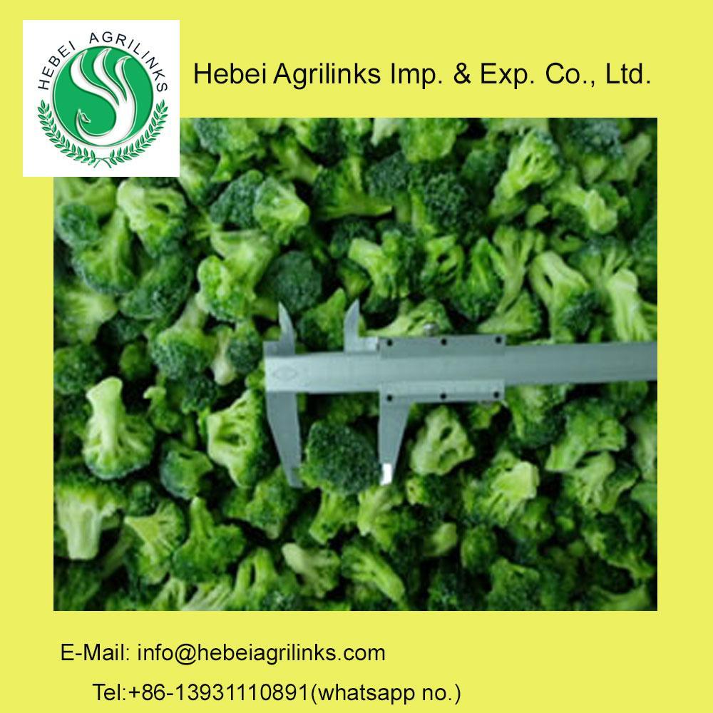 Frozen IQF  Broccoli   1