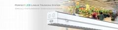 Best Supermarket Lighting Design:Linear Track Light System