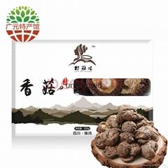 青川三锅乡香菇