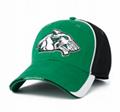 Custom logo Baseball Caps sports hats