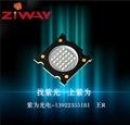 UVLED灯珠厂家订制直供批发点面线光源紫外UVLED灯珠 2