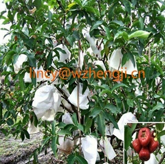 Good quality 100% Polypropylene nonwoven fabric for agriculture