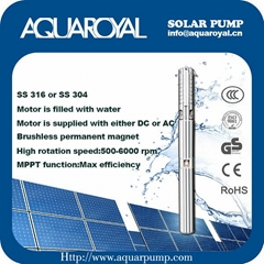 Brushless DC solar  submersible well pump with Stainless steel 316 - 4SP2-5