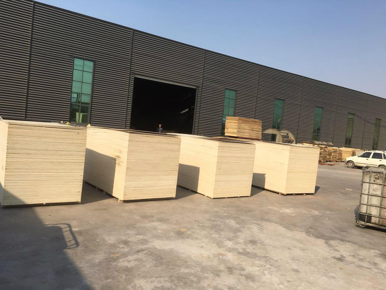 提供优质胶合板多层板桃花芯板 3